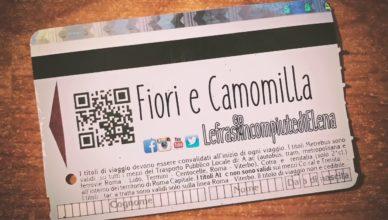 LefrasiincompiutediElena – Fiori e Camomilla